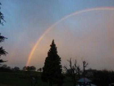 Regenbogenmarianne13