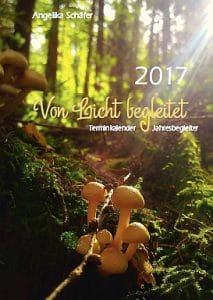 von-licht-begleitet-2017-titel-mittel